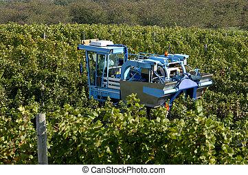 A mechanical grape harvesting machine in a vineyard. Focus = machine. 12MP camera.