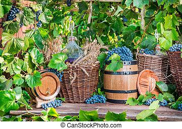 Grape harvest in a village