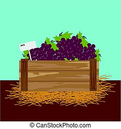 grape in a wooden crate.