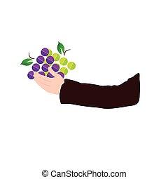 grape in hand illustration