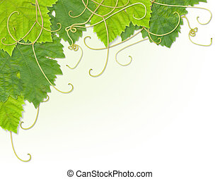 Grape leaf corner - Grape leaves composite design to make up...