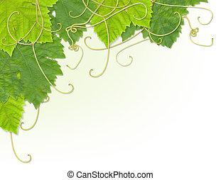 Grape leaf corner - Grape leaves composite design to make up...
