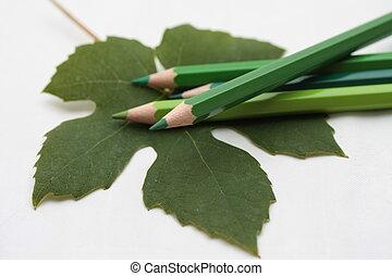 grape leaf - Drawing a grape leaf