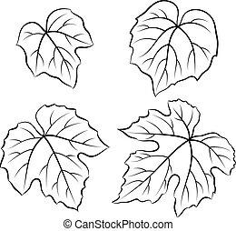 Label Of Grape Leaves Decorative Corner And