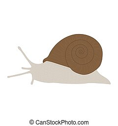 Grape snail isolated on white background. Vector.