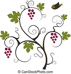 Grape vine and bird. Vector illustration.