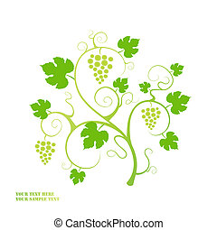 Grape vine background. Vector illustration.