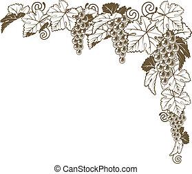 A grape vine border corner ornament design element of grape bunches and leaves in vintage style, wine label concept.