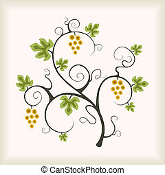 Grape vine. Vector illustration.