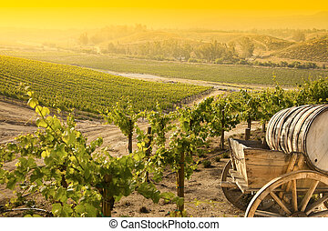 Grape Vineyard with Old Barrel Carriage Wagon - Grape...