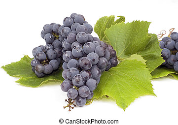 Grape with leafs isolated