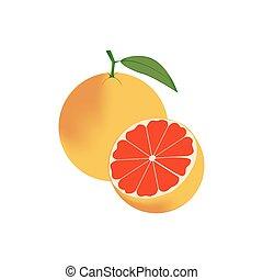 Grapefruit Fruit Icon
