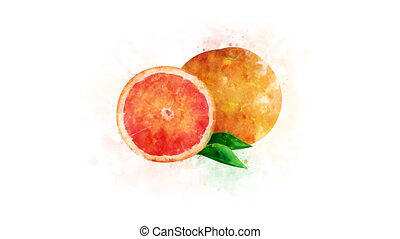 Grapefruit on a transparent background - Animated image of...