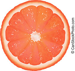 Grapefruit Segment, Isolated On White Background, Vector...