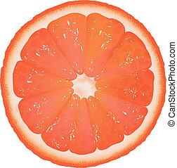 Grapefruit Segment, Isolated On White Background, Vector Background