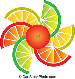 grapefrukt, citron, lime, och, apelsin, andelar