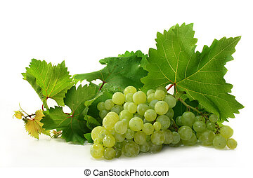 Grapes and vine leaves on a white background