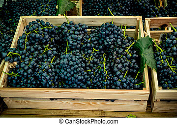 Grapes bunch in wood box