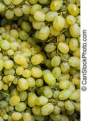 Grapes for white wine