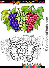 grapes fruits illustration for coloring book