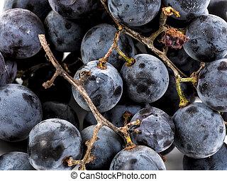 Grapes - Image of grapes berries macro blue