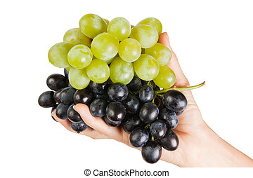Grapes in female palms is isolated on a white background