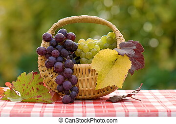 Grapes in small basket
