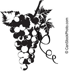Grapes in vines with leave S stylised in silhouette