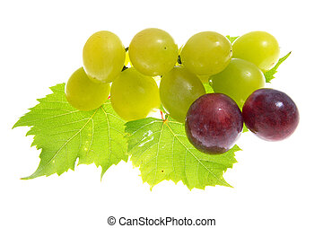 grapes isolated
