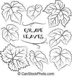 Grapes Leaves Black Pictograms