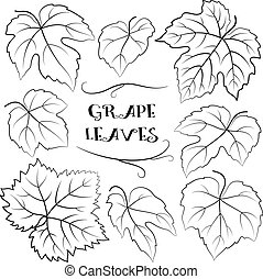 Grapes Leaves Black Pictograms