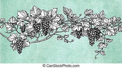 grapes., pociągnięty, wektor, ilustracja, ręka