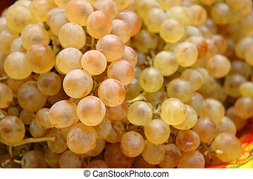 Grapes - shallow depth of field