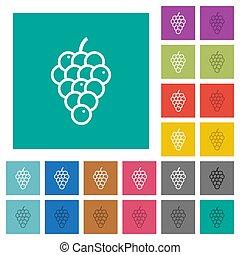 Grapes square flat multi colored icons