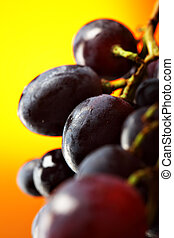 Grapes - Bunch of grapes close-up. Shallow DOF!