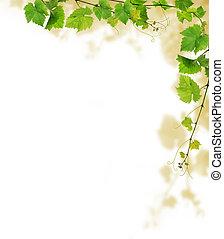 Grapevine border - Decorative frame with grapevine branches,...