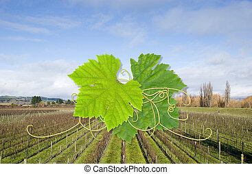 Grapevine design - Grape leaves on a background of bare ...