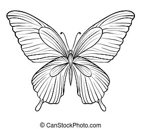 graphic black and white butterfly. Hand-drawn contour lines...