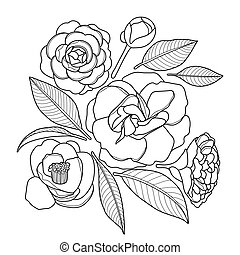 Graphic camellia set isolated on white background Vector ...