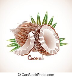 Graphic coconut design - Graphic coconut. Vector natural...