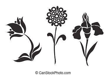graphic design of flowers, vector