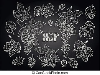 Graphic hops collection