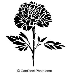 Graphic illustration of black rose