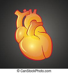 Graphic illustration of Heart
