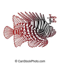 Coloring Book Page Design Graphic Lion Fish