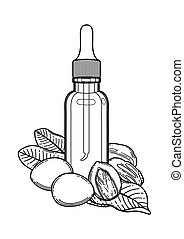 Graphic oil bottles surrounded by shea plants. Vector ...