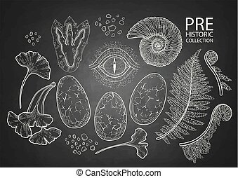 Graphic prehistoric collection