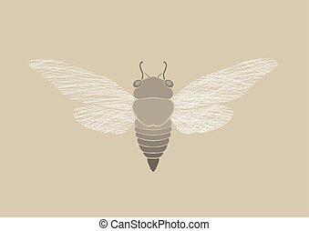 Graphic print of Cicada