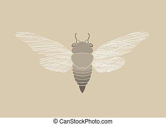 Graphic print of Cicada
