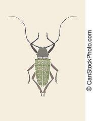 Graphic print of titan beetle. - Graphic print of Titanus...